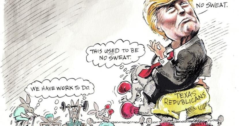 Democrats shook up the Texas primaries.