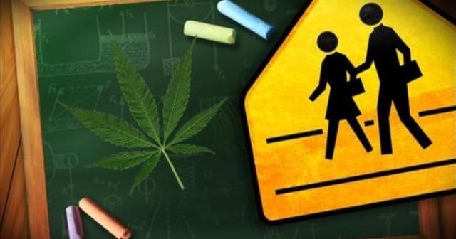 Colorado Benefits from Extra Marijuana Money
